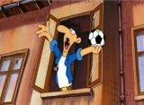 fussball_werner